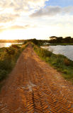 Brick road in rural area Stock Photo
