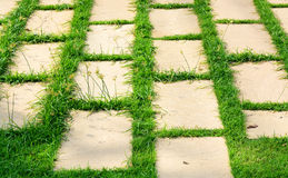 Brick rock on grass Royalty Free Stock Images