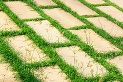 Brick rock on grass Stock Images