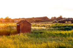 Brick Shed on Open Land Royalty Free Stock Photography