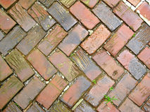 Brick SIdewalk Design Royalty Free Stock Image