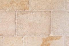 Brick stone background Royalty Free Stock Photo