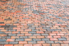 Brick street sidewalk Royalty Free Stock Photo