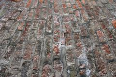 Brick surface Royalty Free Stock Photography