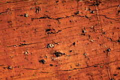 Brick texture. Solid red brick macro texture Royalty Free Stock Images