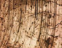 Brick texture. A detailed concrete brick texture Stock Image