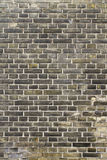 Brick texture. Grungy wall texture yellow and grey wall Stock Images