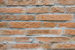 The brick texture. The orange medium brick texture Stock Photos