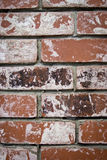Brick texture Royalty Free Stock Photos