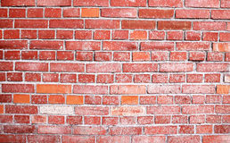 Brick textured background Royalty Free Stock Images