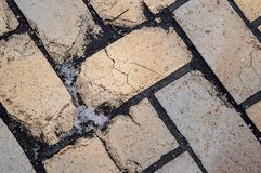 Brick tiles in the winter cold day close-up royalty free stock photography