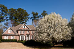 Brick Traditional House with Blooming Pear Tree Royalty Free Stock Photos