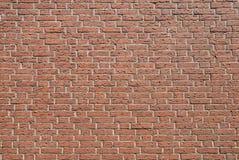 Brick wal Royalty Free Stock Image