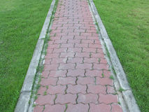 Brick walk path in a garden with lush  grass Stock Photos
