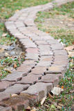A brick walk way in the garden. A long blocks footpath in back yard Royalty Free Stock Photography