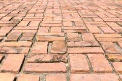 brick walk way Stock Photos