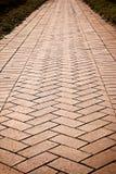 Brick walk way Stock Images