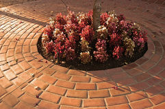 Brick walkway. Landscape detail of circular brick walkway Royalty Free Stock Images