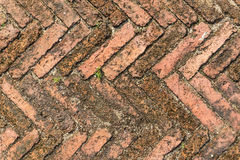 Brick walkway. Sort orange brick path and a small grass on sand stock image