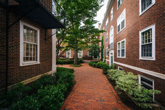 Brick walkway and buildings at Harvard Business School, in Bosto Stock Images