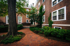 Brick walkway and buildings at Harvard Business School, in Bosto Stock Photography