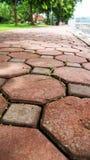 Brick Walkway. Curving brick walkway in lawn Stock Photo