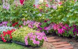 Brick walkway in flower garden Stock Image