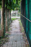 Brick Walkway. A walking way with trees and fence on both side Stock Photo
