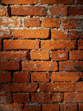 Brick Wall. Old brick wall, with uneven lighting Royalty Free Stock Image