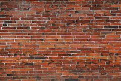 Free Brick Wall Royalty Free Stock Images - 14180719