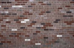 Free Brick Wall Royalty Free Stock Photography - 149747