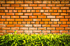 Brick wall. For the background stock images