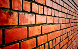Brick wall. For the background royalty free stock photography