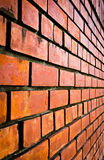 Brick wall. For the background royalty free stock photo