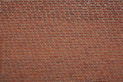 Brick_Wall Imagem de Stock Royalty Free