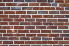 Brick-wall Royalty Free Stock Photography