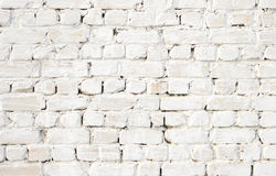 Brick wall Stock Photography