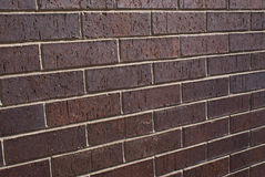 Brick wall. Angled clean brick wall in sun shine Stock Image