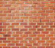 Brick wall. A brick wall with red bricks royalty free stock images