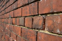 Brick Wall. Close up perspective view of a brick wall with narrow DOF royalty free stock images