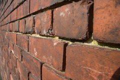 Brick Wall. Close up perspective view of a brick wall with narrow DOF royalty free stock photography