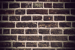 Brick wall Stock Image
