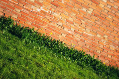 Brick wall. Bright brick wall and green grass with yellow flowers stock images