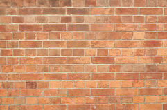 Free Brick Wall Royalty Free Stock Photography - 31253567