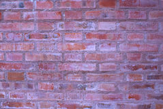 Brick wall. Very old red brick wall Stock Photography