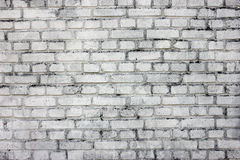 Brick wall. Grunge brick wall - full scale background Royalty Free Stock Images