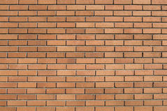 Free Brick Wall Royalty Free Stock Photo - 4647885