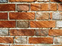 Brick Wall. Red Brick wall with sunlight reflections Royalty Free Stock Image