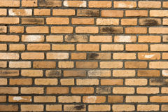 Brick wall. Brown brick wall background, texture Stock Image