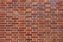 Brick wall Royalty Free Stock Images